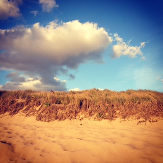 Cape Cod Beach Sand Dunes
